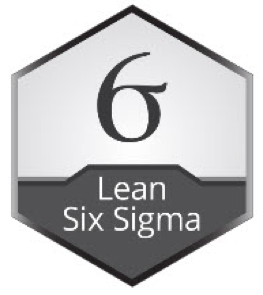 Black belt Lean Six Sigma